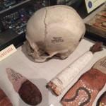 Skull(3)