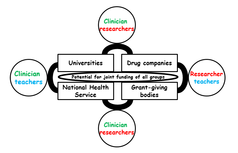 Figure Possible joint funding streams for different types of clinicians, researchers, and teachers; the illustrated possibilities are not comprehensive