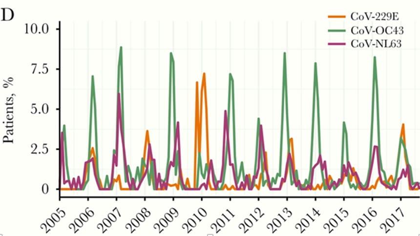 Graph of seasonal coronavirus infections