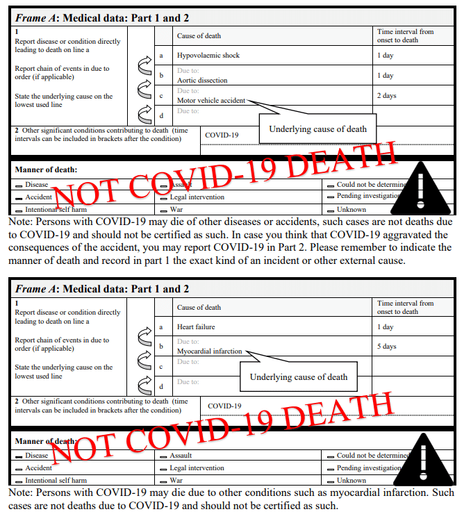 Death Certificate Data Covid 19 As The Underlying Cause Of Death The Centre For Evidence Based Medicine